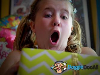 Doggie Doo All: Birthday